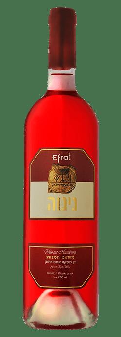 מוסקט המבורג - יין מוסקט אדום מתוק