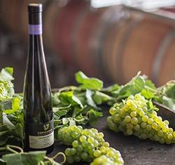 בקבוק יין לצד אשכול ענבים ירוקים