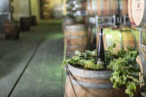חביות יין טפרברג