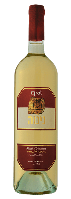 יין מוסקט לבן