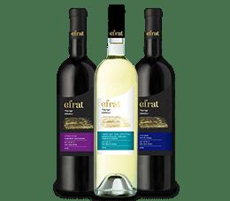 3 בקבוקי יין סדרת ישראלי